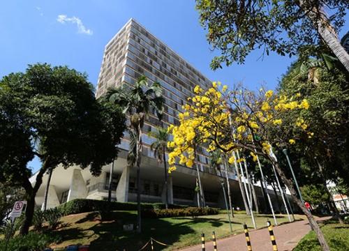 Prefeitura de Campinas criou um site para combater a pandemia (Crédito: divulgação)